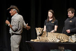 02-27-2013 Jack Hanna Shows Variety of Animals at SWOSU Panorama Event 1/2