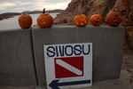 10-19-2016 Underwater Pumpkin Carving Contest Planned at SWOSU by Southwestern Oklahoma State University